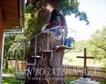 Pictură monumentală stejar finisaj
