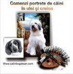 Portrete de câini în ulei și creion