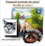 Portrete de pisici în ulei și creion