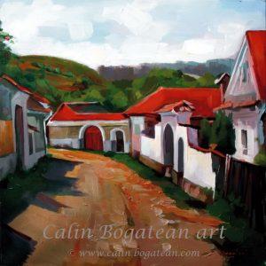 Satul mureșean uliță și case